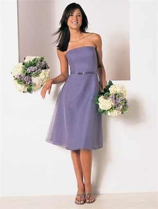 Buy Alfred Angelo Bridesmaid Dress with sizes 14 12 10 in Victorian Lilac – ID6134