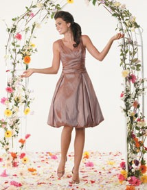 Buy Jordan Fashions Bridesmaid Dress with sizes 12 10 8 in Sable – ID632