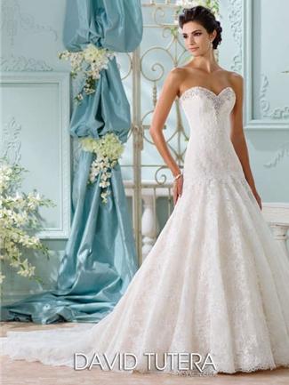 House of Brides - Martin Thornburg for Mon Cheri